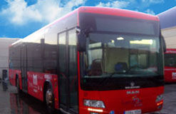 Local buses in Fuengirola