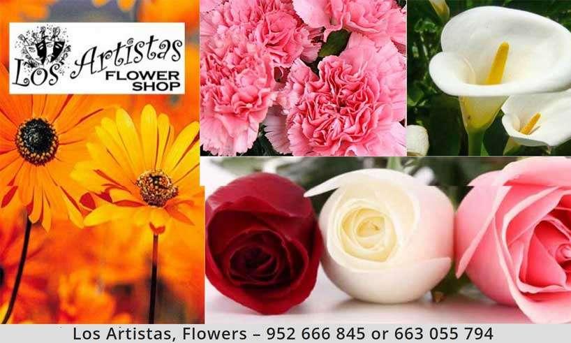 Los Artistas Flower